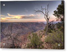 Grand Canyon 991 Acrylic Print