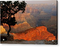 Grand Canyon At Sunrise Acrylic Print by Stephen  Vecchiotti