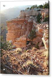 Acrylic Print featuring the photograph Grand Canyon Bluff by Nancy Taylor