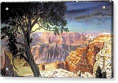 Grand Canyon Acrylic Print by Nancy  Ethiel