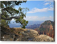 Grand Canyon North Rim Craggy Cliffs Acrylic Print