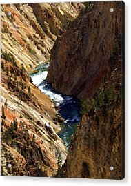 Grand Canyon Of The Yellowstone 1 Acrylic Print by Marty Koch