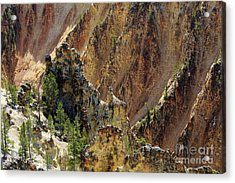 Grand Canyon Of The Yellowstone From North Rim Drive Acrylic Print by Louise Heusinkveld