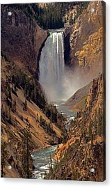 Grand Canyon Of The Yellowstone Acrylic Print by Robert Pilkington