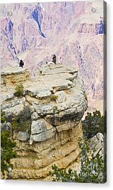 Acrylic Print featuring the photograph Grand Canyon Photo Op by Chris Dutton