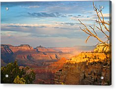 Grand Canyon Splendor Acrylic Print