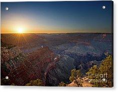 Grand Canyon Star Acrylic Print by Jamie Pham