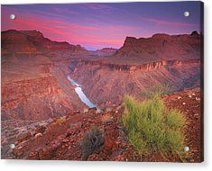 Grand Canyon Sunrise Acrylic Print by David Kiene