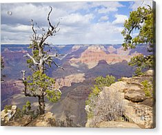 Acrylic Print featuring the photograph Grand Canyon View by Chris Dutton