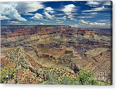 Grand Canyon View Acrylic Print by John Kelly