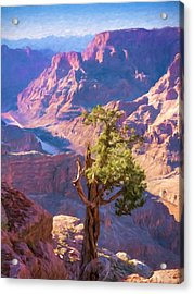 Grand Canyon West Acrylic Print