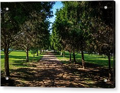 Acrylic Print featuring the photograph Grand Pathway - The Hermitage by James L Bartlett