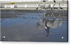 Grand Prix Reflected Acrylic Print by JAMART Photography