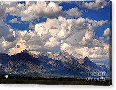 Grand Teton National Park Acrylic Print by Diane E Berry