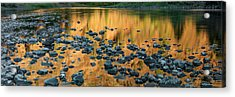 Grande Ronde Gold Acrylic Print by Leland D Howard