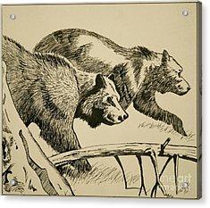 Grandma B's Bears Acrylic Print by Linda Simon