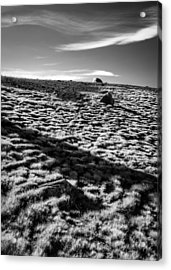 Acrylic Print featuring the photograph Granite Lakes Meadow by Alexander Kunz