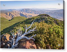 Acrylic Print featuring the photograph Granite Mountain View by Alexander Kunz