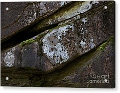 Granite Rock Close Up Acrylic Print by Michael Mooney