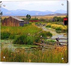 Grant Khors Ranch Deer Lodge  Mt Acrylic Print by Marty Koch