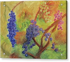 Grape Collage Acrylic Print by Ken Figurski