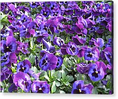 Grape Jelly Acrylic Print