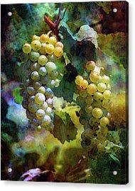 Grape Prism 2739 Idp_2 Acrylic Print