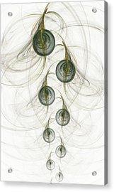 Grape Vine Acrylic Print