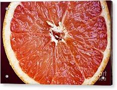 Grapefruit Half Acrylic Print by Ray Laskowitz - Printscapes