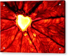 Grapefruit Heart Acrylic Print