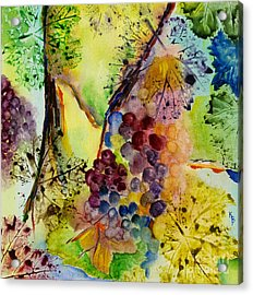 Grapes And Leaves IIi Acrylic Print