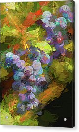 Grapes In Abstract Acrylic Print by Penny Lisowski
