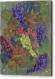 Grapes On The Vine Art Acrylic Print by Ken Figurski
