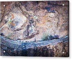 Grapevine Hills No. 7 Acrylic Print by Al White