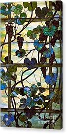 Grapevine Acrylic Print