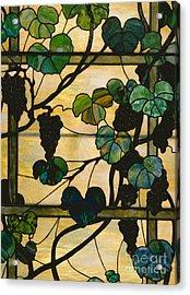 Grapevine Panel Acrylic Print
