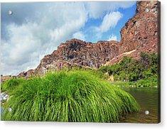 Grass Along John Day River In Central Oregon Acrylic Print