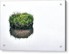 Grass Island Acrylic Print by Joana Kruse