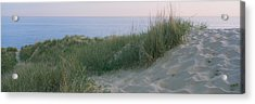 Grass On A Sand Dune, Indiana Dunes Acrylic Print by Panoramic Images