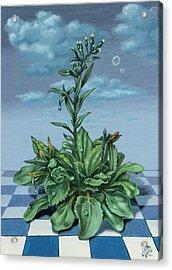 Grass Acrylic Print