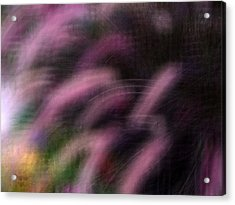 Grasses Acrylic Print by Eileen Shahbazian