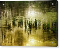 Acrylic Print featuring the photograph Grassland Abstract by Jessica Jenney