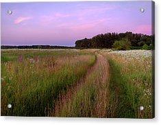 Grassland. Lebedivka, 2018. Acrylic Print