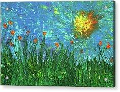 Grassland With Orange Flowers Acrylic Print by Erik Tanghe