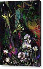 Grasslands Series No. 7 Acrylic Print by Vinson Krehbiel