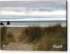 Acrylic Print featuring the photograph Grassy Beach by William Havle