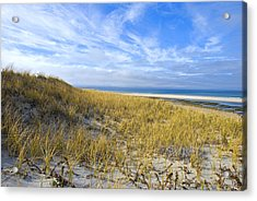 Grassy Sand Dunes Overlooking The Beach Acrylic Print