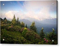 Grassy Ridge Rhododendron Bloom Acrylic Print
