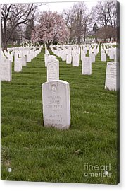 Grave Markers In Arlington National Cemetery Acrylic Print by Tim Grams