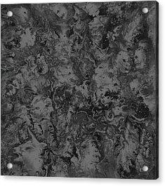 Gray-dream Acrylic Print by Bart Baird